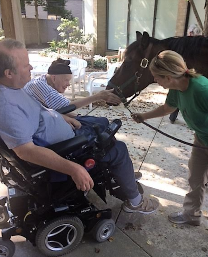 two older people in wheelchairs interact with a horse as a woman holds the lead