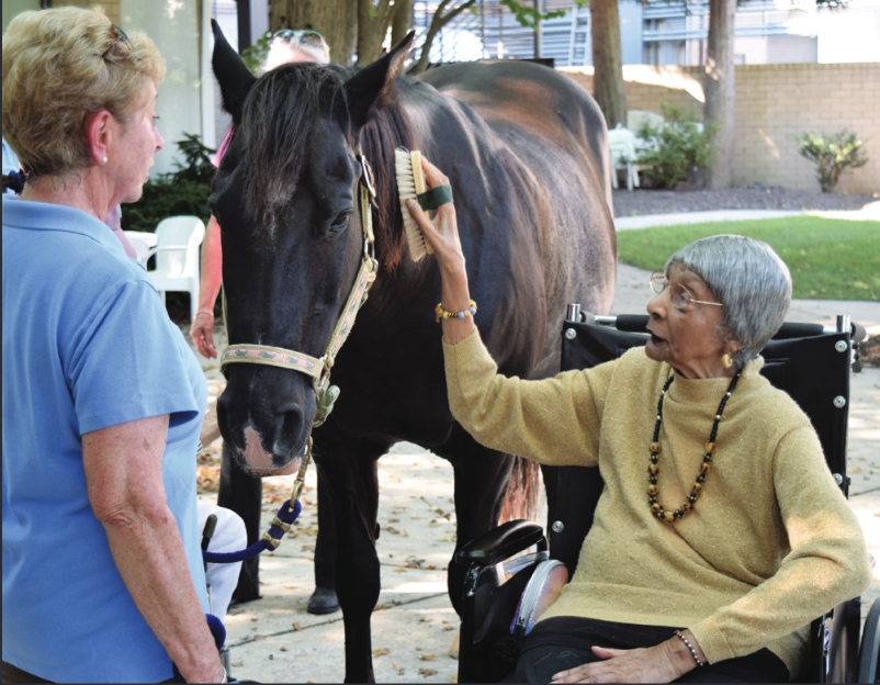 woman in a wheelchair brushing a horse as another woman looks on